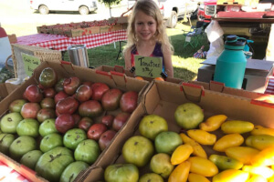 You can buy fresh produce at the Festival's Farmer's Market